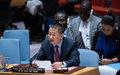 l'envoyé de l'ONU se félicite des progrès vers la stabilité